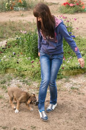 Puppy biting the girls leg
