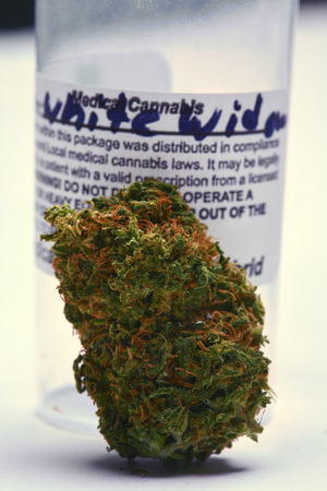 bud weed: Sativa marijuana bud with container Stock Photo