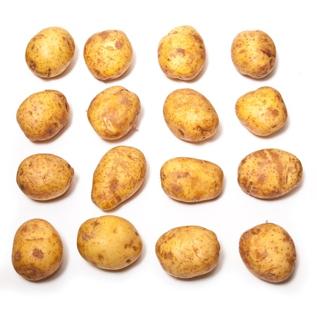 White Potatoes isolated on a white studio background  photo