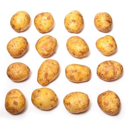 White Potatoes isolated on a white studio background