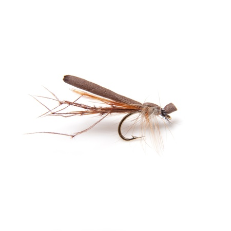 daddy long legs: Foam daddy long legs trout fly size 12 isolated on a white studio background.