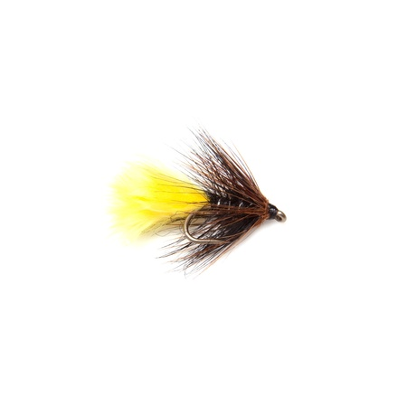 Sunburst kate McLaren trout fly size 12 isolated on a white studio background. Stock Photo - 16501731