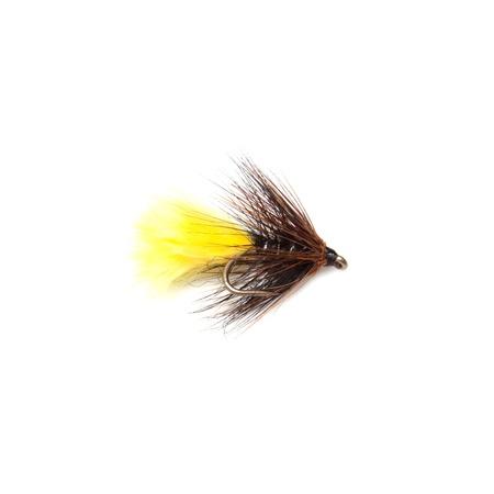 Sunburst kate McLaren trout fly size 12 isolated on a white studio background. Stock Photo - 16501731