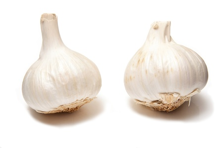 Garlic bulbs iaolated on a white studio background. Stock Photo - 16502651