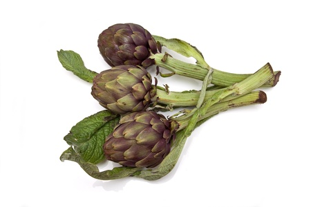 Italian Artichokes isolated ona white studio background. photo