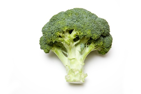brocolli: Brocolli isolated on a white background