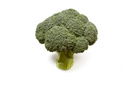 brocolli: Brocolli isolated on a white studio background.