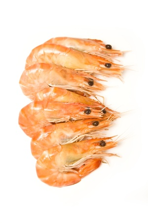 Crevettes, cooked prawns (shrimp) isolated on a white studio background photo