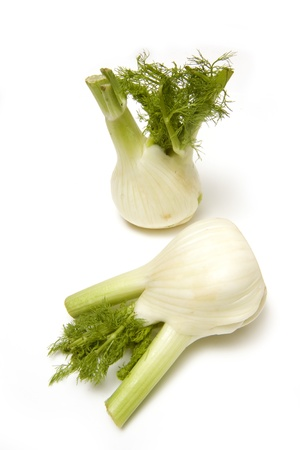 Fennel isolated on a white studio background. photo
