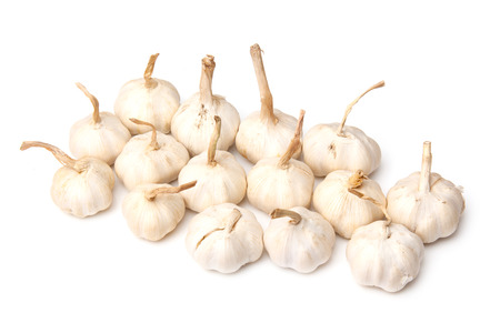 Garlic bulbs isolated on a white studio background. photo