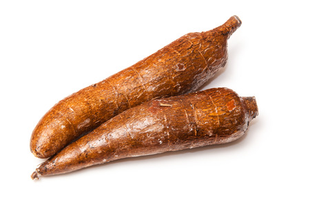 Cassava or Manioc roots (Manihot esculenta) isolated on a white studio background. Stock Photo