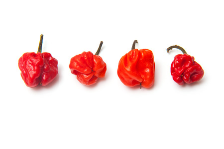 Scotch bonnet chili peppers or Caribbean peppers isolated on a white studio background. photo