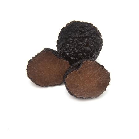 truffe blanche: Truffe noire d'�t� isol� sur un fond blanc studio. (Tuber aestivum) ou la truffe de Bourgogne isol� sur un fond blanc studio.
