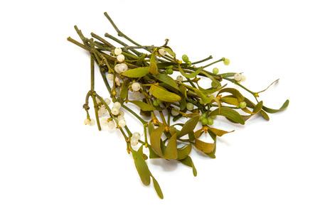Bunch of mistletoe isolated on a white studio background. Stock Photo