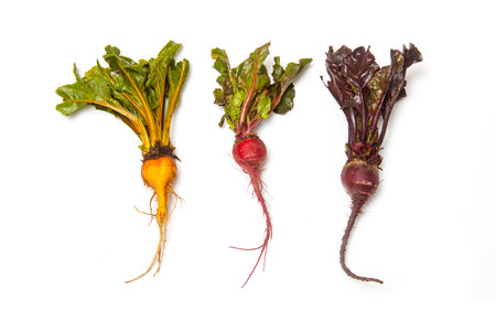 Yellow pink and traditional purple Beetroot isolated on a white studio background.