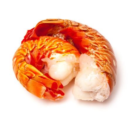 spiny lobster: Tropical Caribbean ( Bahamas )  lobster (Panuliirus argus) or spiny lobster tails isolated on a white studio background. Stock Photo