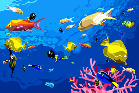 many colorful fish swim under water