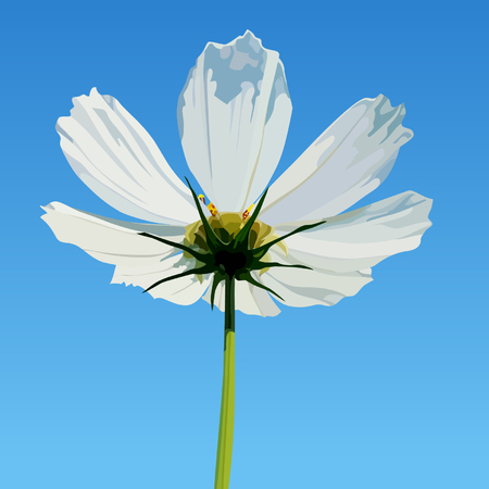painted white flower on blue sky background