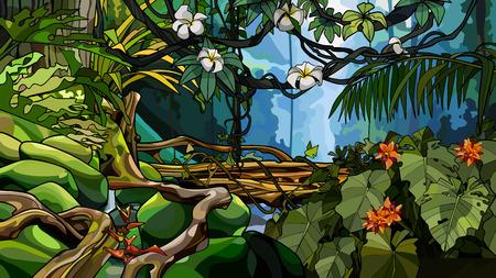 schöner Dschungelhintergrund mit Dickicht tropischer Bäume und Pflanzen Vektorgrafik