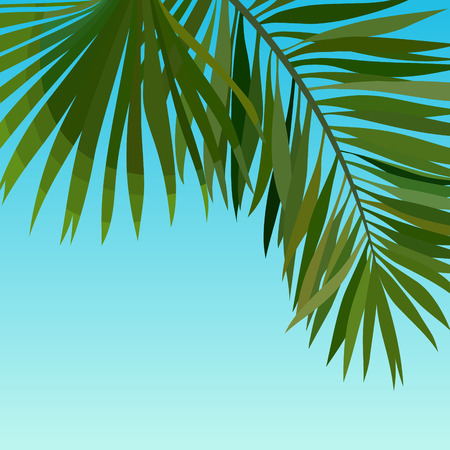 painted blue sky background with palm leaves Stock Illustratie