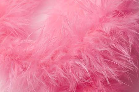 feather boa: pink feather boa