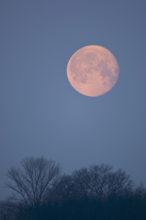location shot: Germany,Bavaria,Full moon in morning
