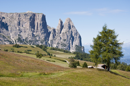 location shot: Italy,Alpine meadow towards Schlern and Santner Spitze at South Tyrol