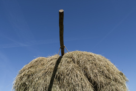 location shot: Germany,Bavaria,Hay cart with pole against sky
