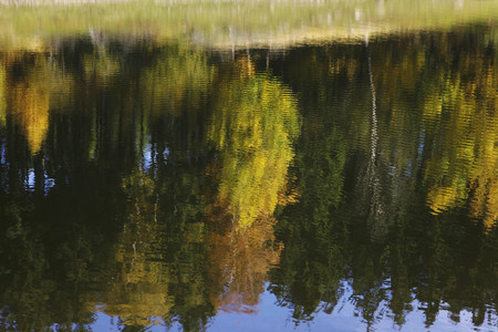 location shot: Germany,Saxony,Reflection of autumn trees in water LANG_EVOIMAGES