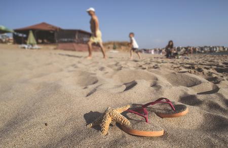 sandalias: Bulgaria, flip flops y estrellas de mar en la playa