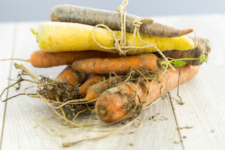 cruddy: Different sorts of organic carrots