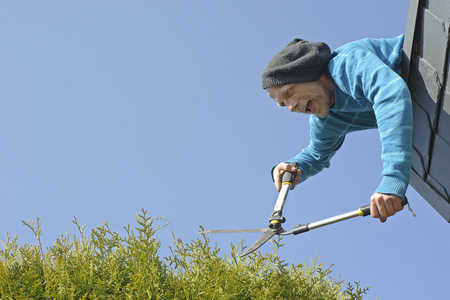 motivations: Man trimming hedge from top of roof