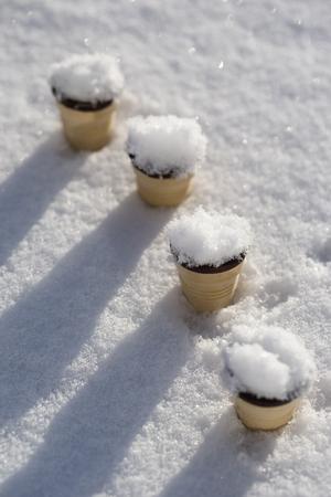 perishable: Four ice cream cones sticking in snow LANG_EVOIMAGES