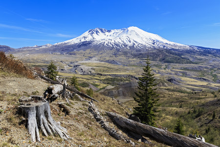 mountaintops: USA, Washington, Mount St. Helens as seen from  Johnston Ridge Observatory and damage in landscape from eruption