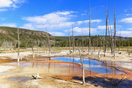 USA, Yellowstone National Park, Black Sand Basin, Opalescent Pool