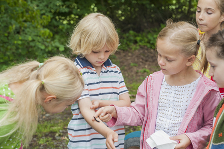 io: Germany, Children watching caterpillar of peackock butterfly on arm of a boy LANG_EVOIMAGES