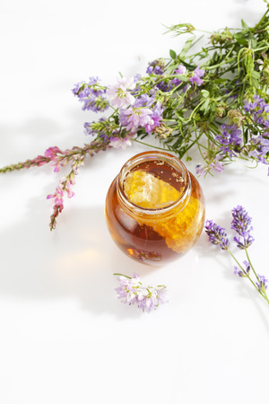 trifolium: Glass of blossom honey with honeycomb and blossoms on white ground
