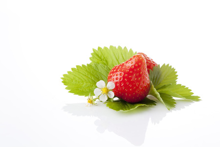 interiour shots: Strawberries, Fragaria, blossom and leaves LANG_EVOIMAGES