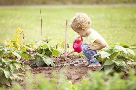 cowering: Little girl crouching in the garden watering plants