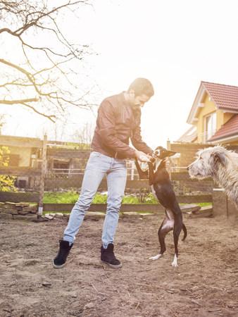 Man training his dog while Irish Wolfshound watching them