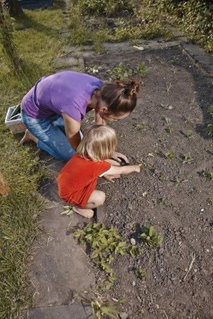domestication: Mother and daughter planting seedlings in garden