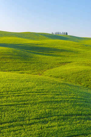 Italy, Tuscany, Val dOrcia, view to rolling landscape LANG_EVOIMAGES