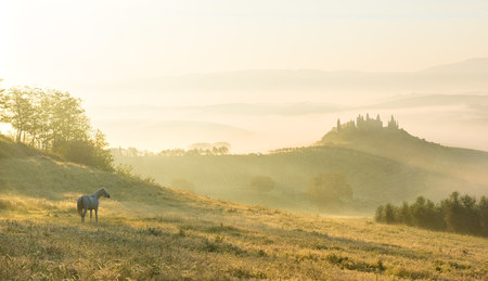 sunrises: Italy, Tuscany, San Quirico dOrcia, view to rolling landscape in the morning mist