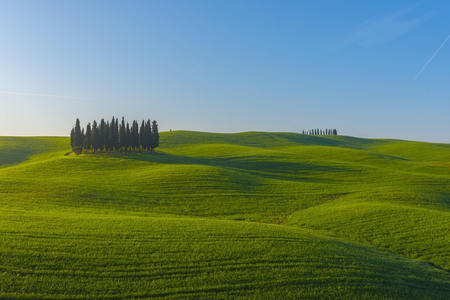 Italy, Tuscany, Val dOrcia, view to rolling landscape with cypresses LANG_EVOIMAGES