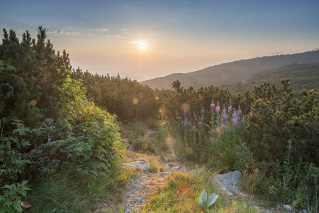 secluded: Bulgaria, Rila mountain range, sunrise