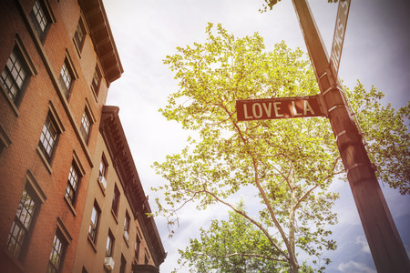 one lane road sign: USA, New York City, Brooklyn Heights, Love Lane