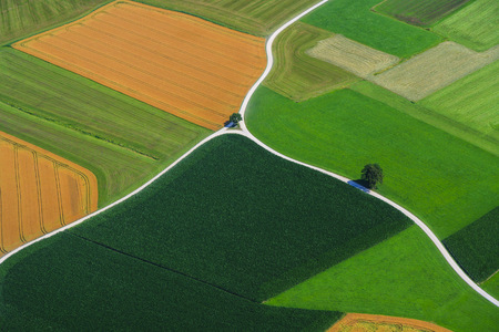 forked: Germany, Bavaria, View of fields and country road, aerial view