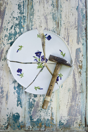 careless: Plate, floral design, gentian, broken, hammer LANG_EVOIMAGES
