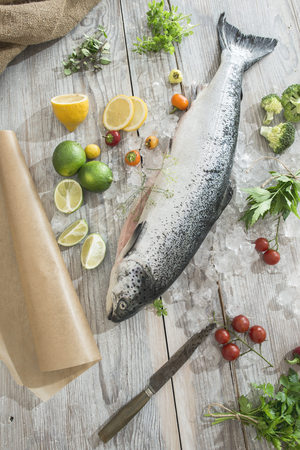 Raw salmon with ice and vegetables LANG_EVOIMAGES