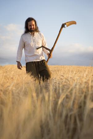 guadaña: Agricultor orgánico con guadaña en campo de cebada